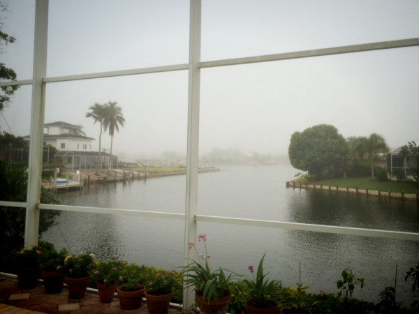first foggy morning of the season...